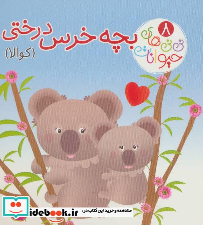 نی نی های حیوانات 8 بچه خرس درختی کوالا