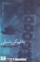 بغلم کن شبلی (پازل شعر امروز)