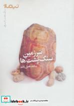 سرزمین سنگ پشت ها (پازل شعر امروز)